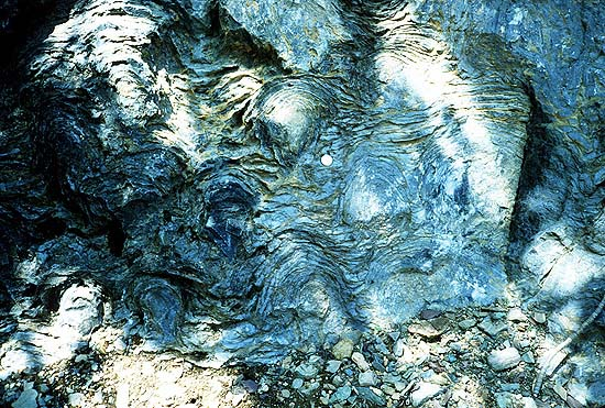 Precambrian stromatolites in the Siyeh Formation, Glacier National Park. In 2002, a paper in the scientific journal Nature suggested that these 3.5 Ga (billion years old) geological formations contain fossilized cyanobacteria microbes. Credit: National Park Service. P. Carrara, NPS